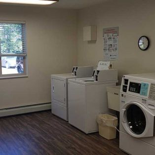 Pine Cone Manor Laundry Room
